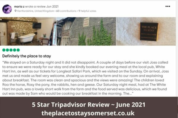 5 Start Tripadvisor Review _ June 2021 - Most popular Bed & Breakfast In Frome Area. 5 star rating from Trivago. Rated Excellent, (391 Reviews). The Place To Stay, Frome, Somerset family Accommodation